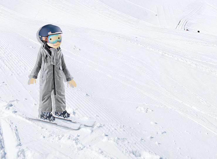 Færdselsregler på ski